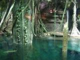 Acuario de agua dulce, ParqueExplora
