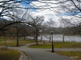 Inwood Hill Park, New York