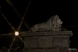 Budapest_lions