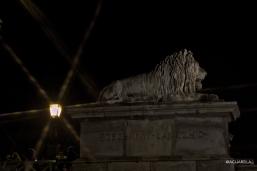 Budapest_lions